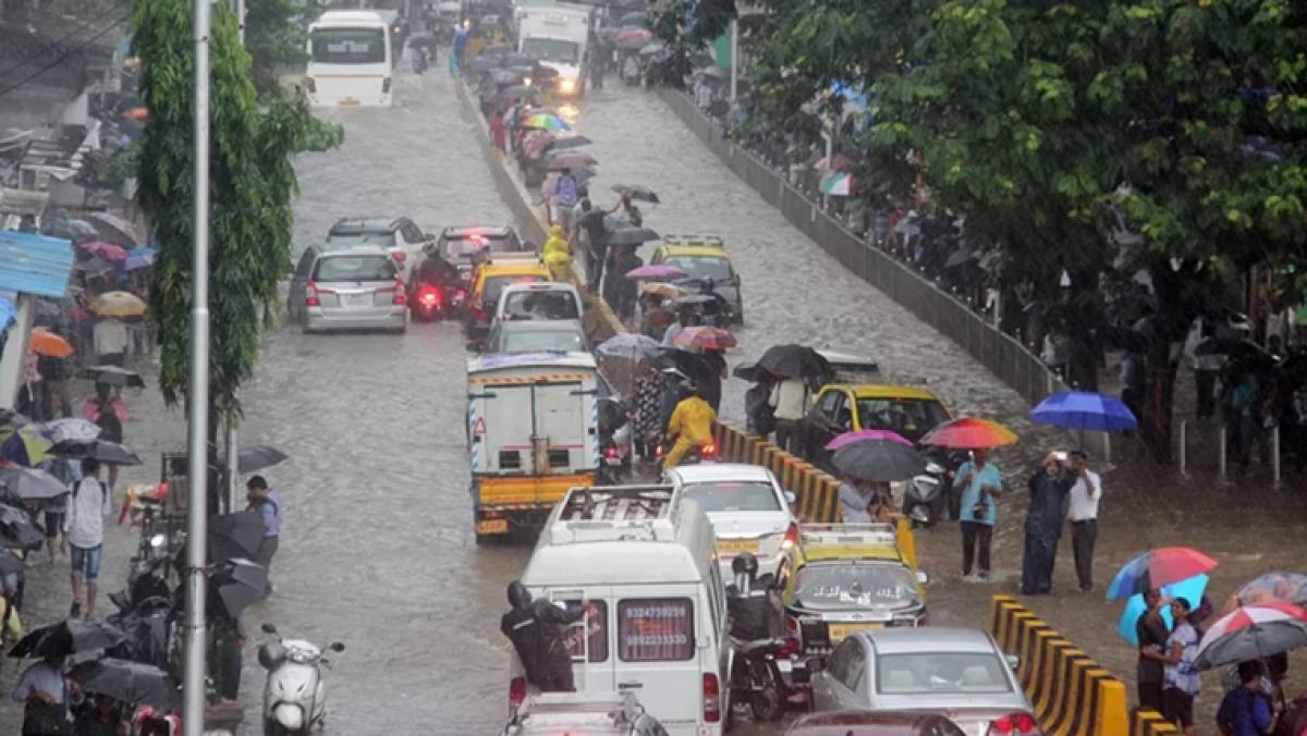 High flash flood risk in Madhya Pradesh, Rajasthan, Gujarat, moderate risk in Goa, Konkan, says CWC official