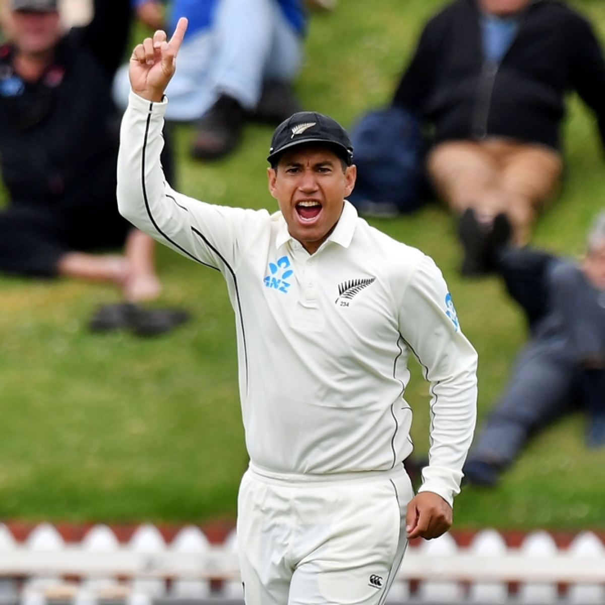 NZ vs IND: Ross Taylor receives standing ovation from crowd during his 100th Test match at Basin Reserve
