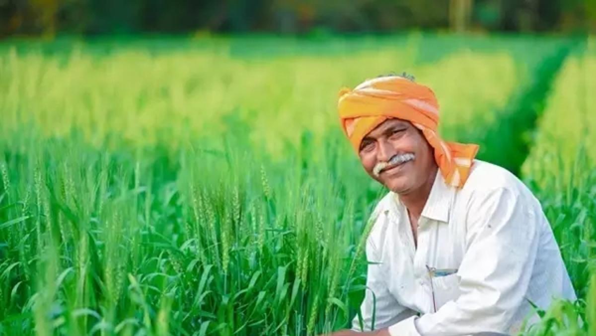 Farmer/Representative Image