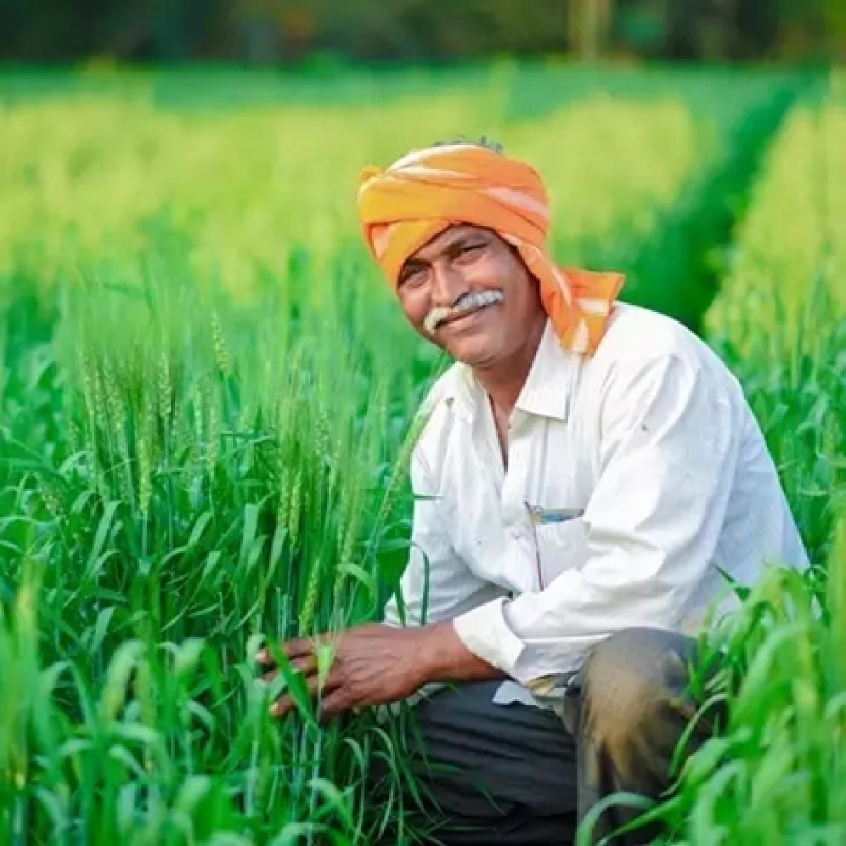 Madhya Pradesh: CM Shivraj Singh Chauhan gives Rs 2981.24 crore of crop insurance to 15 lakh farmers online
