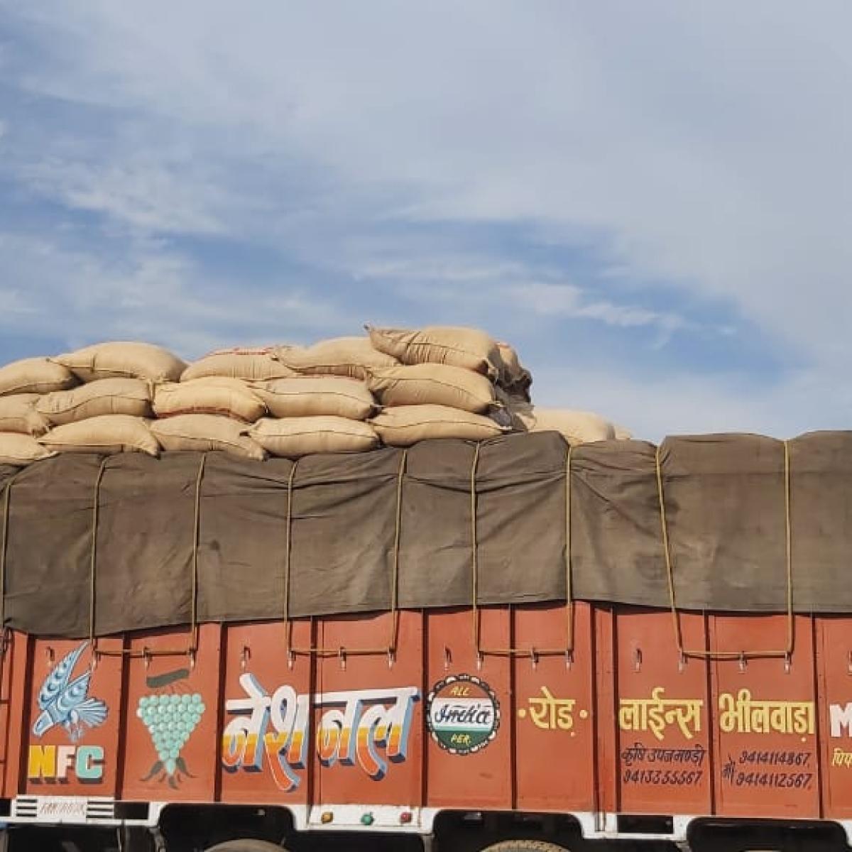 Madhya Pradesh: Adulterated carom seeds worth Rs 3L seized