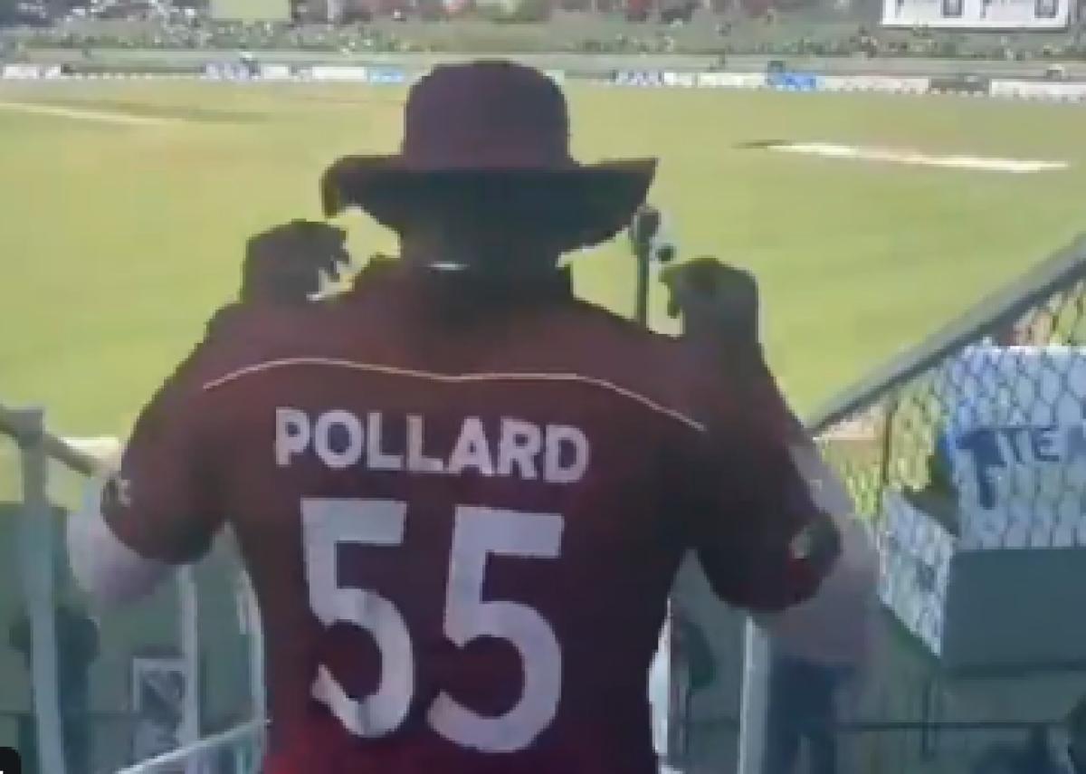 West Indies skipper Kieron Pollard becomes first T20 star to play 500 games