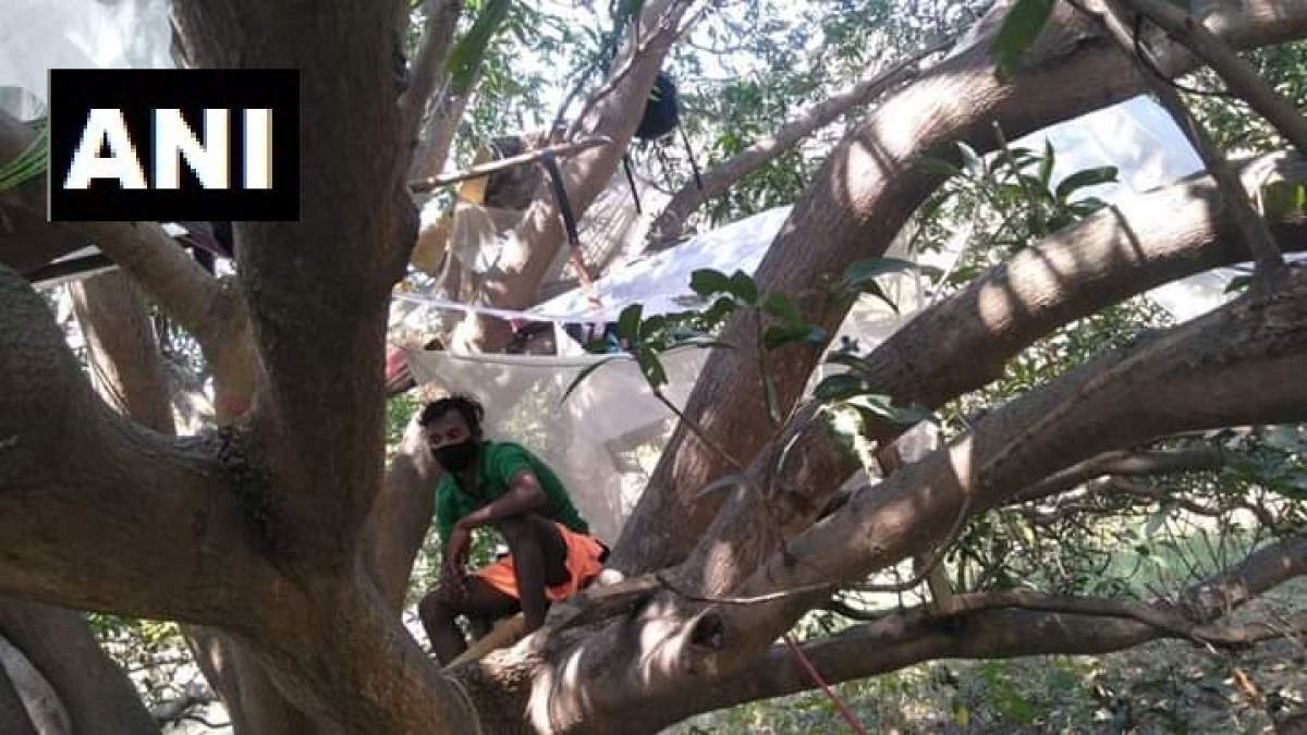 Social distancing amid poverty: West Bengal villagers forced to self-isolate atop trees amid coronavirus lockdown