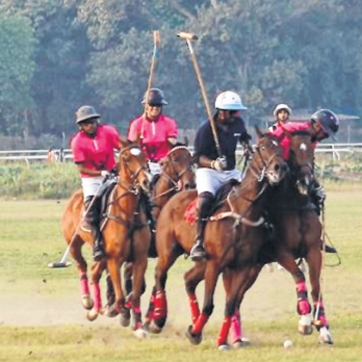 ARC puts off all polo events this season