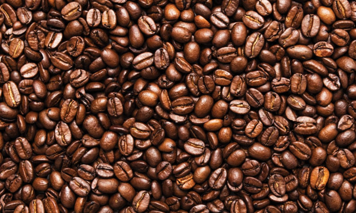 Deforestation for coffee production increases malaria risk