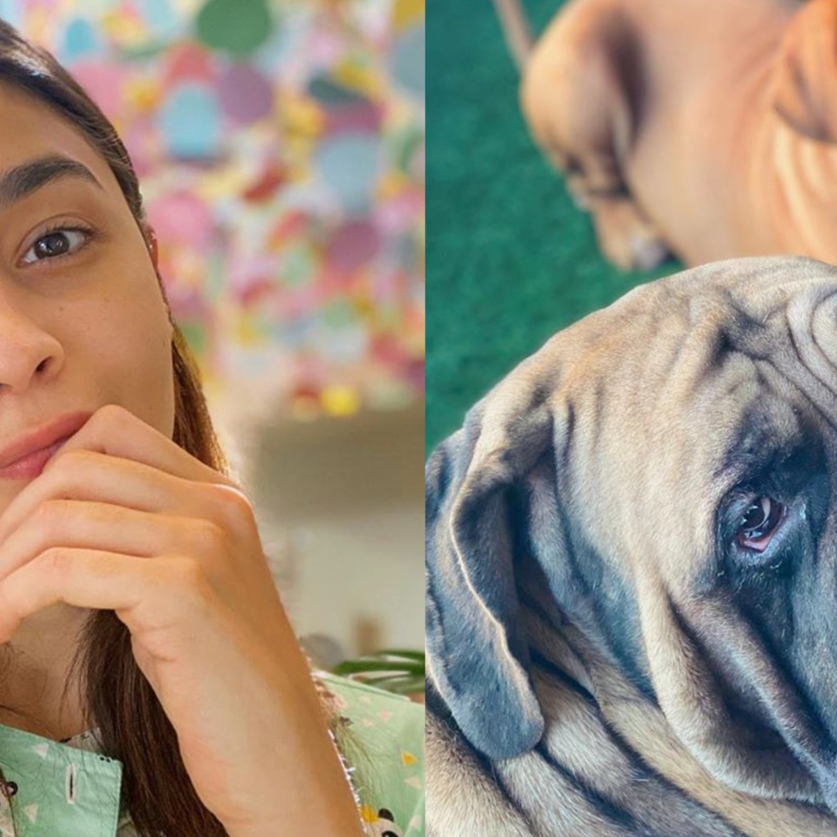 Alia Bhatt shares 'pawsome' pics of beau Ranbir Kapoor's dogs as she shows off her photography skills