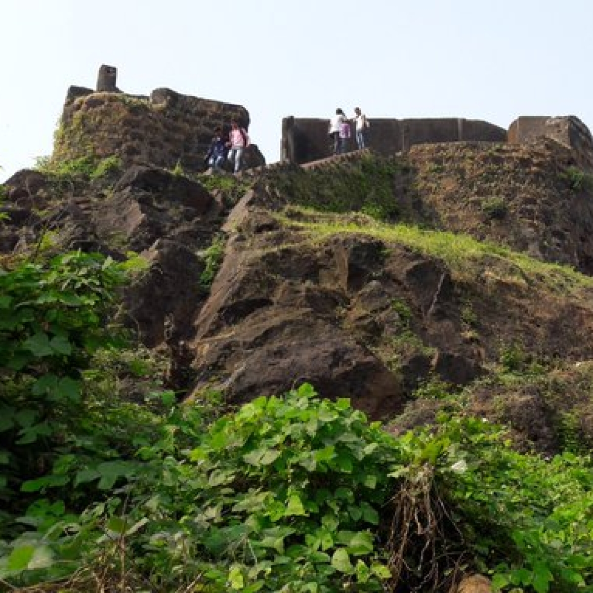 Mumbai: Civic body garden cell to revamp Worli, Sion forts