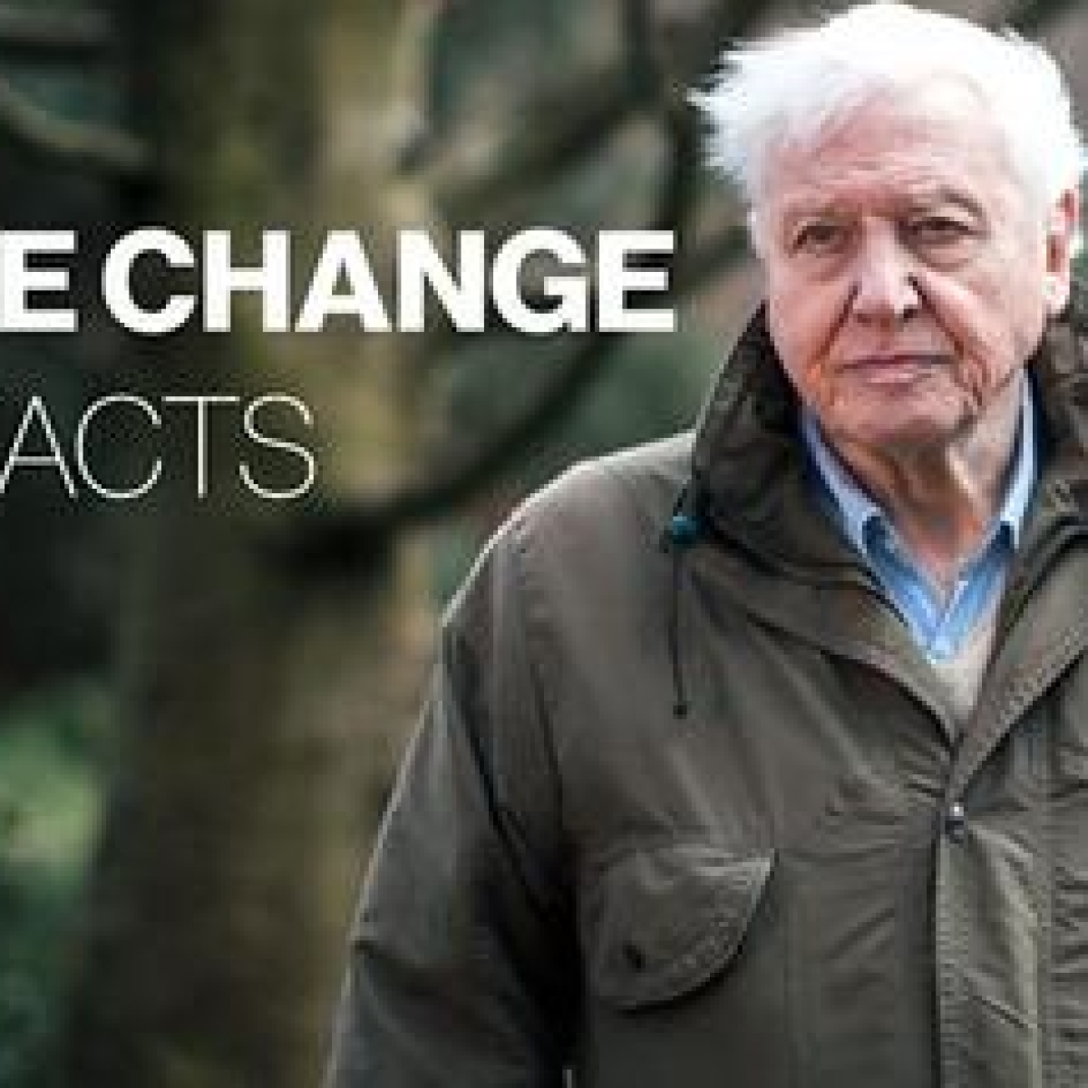 Web Documentary Review -- Climate Change: The Facts; It shows mankind the mirror