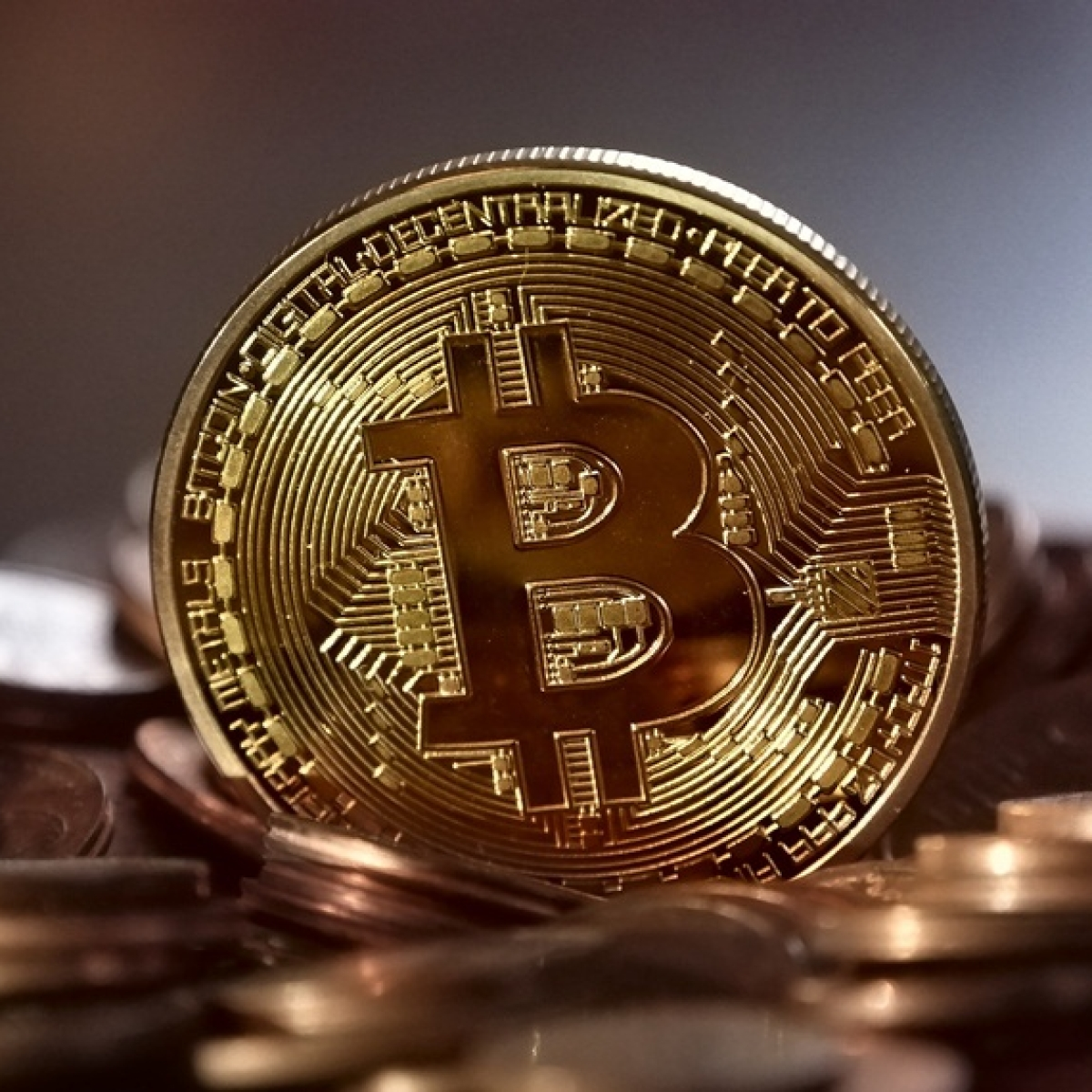 Cryptocurrency players welcome SC lifting trading ban