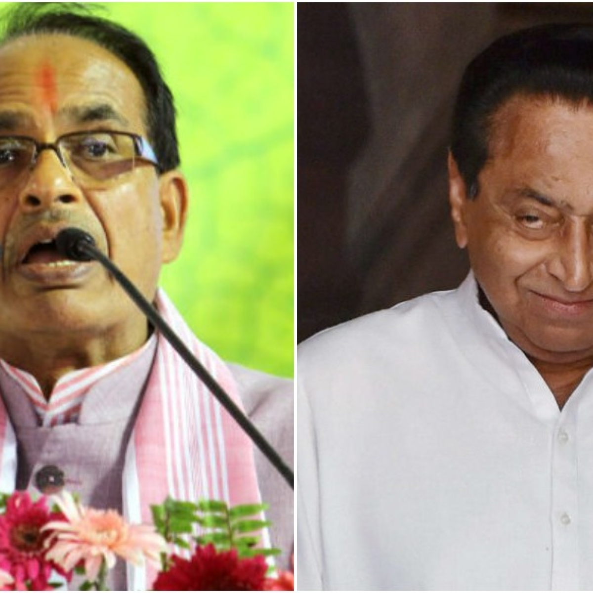 Madhya Pradesh: Operation Lotus vs Operation Panja begins ahead of Rajya Sabha polls