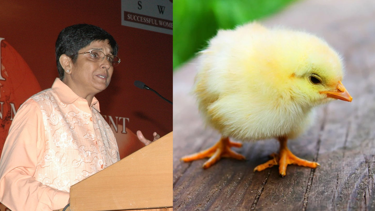 Kiran Bedi claims chicks from eggs thrown out due to corona have 'hatched', Twitter wonders how she cleared UPSC