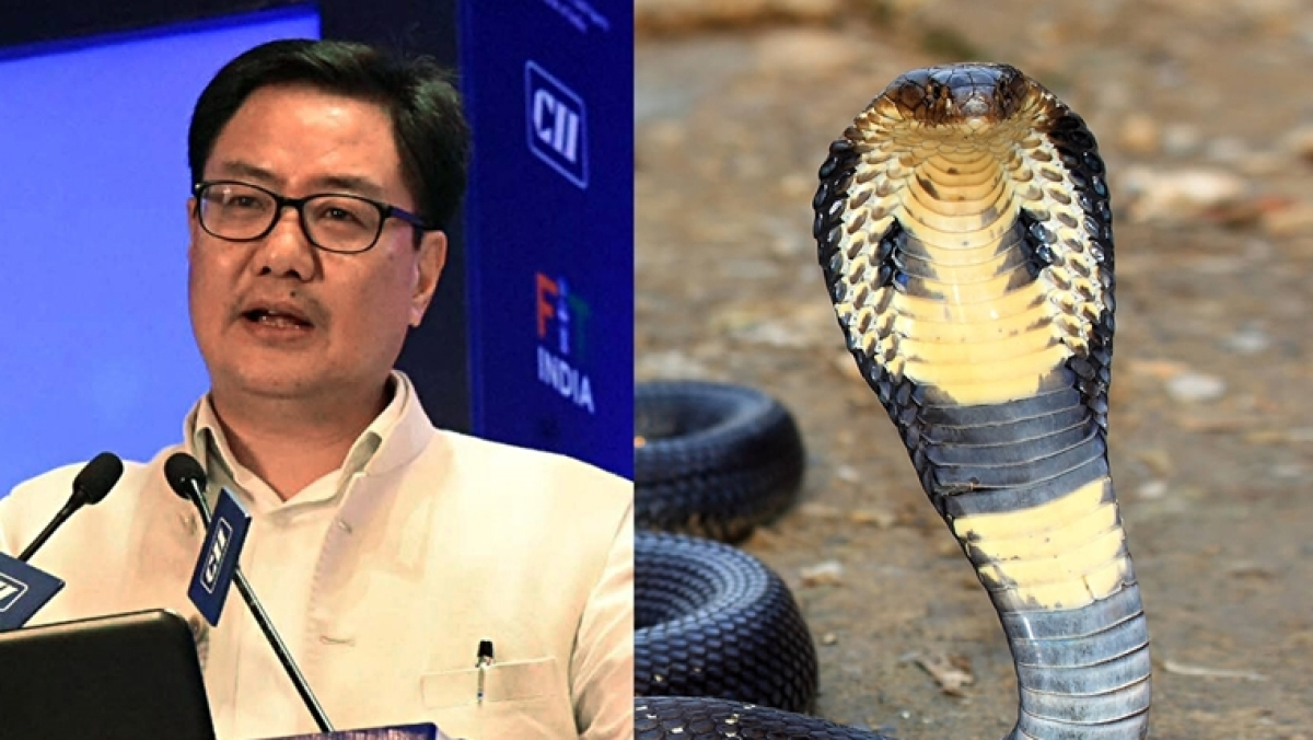 Kiren Rijiju accuses NDTV of spreading 'fake news' about people eating a cobra amid lockdown in Arunachal Pradesh