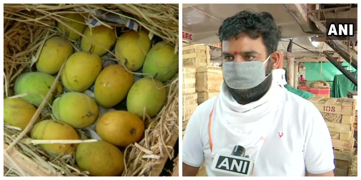 Mango farmers, wholesale dealers face huge losses in Maharashtra amid coronavirus lockdown