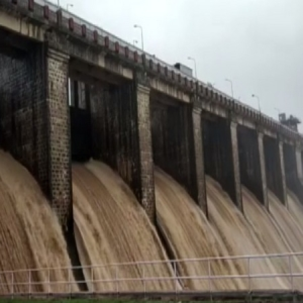 MP Government terminates Maheshwar power purchase agreement, Narmada Bachao Andolan hails decision