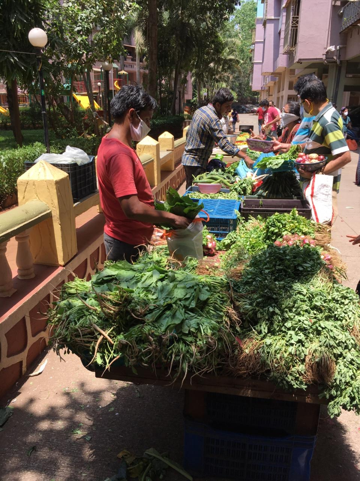 In pics: Residents practice social distancing as societies arrange for vegetable vendors