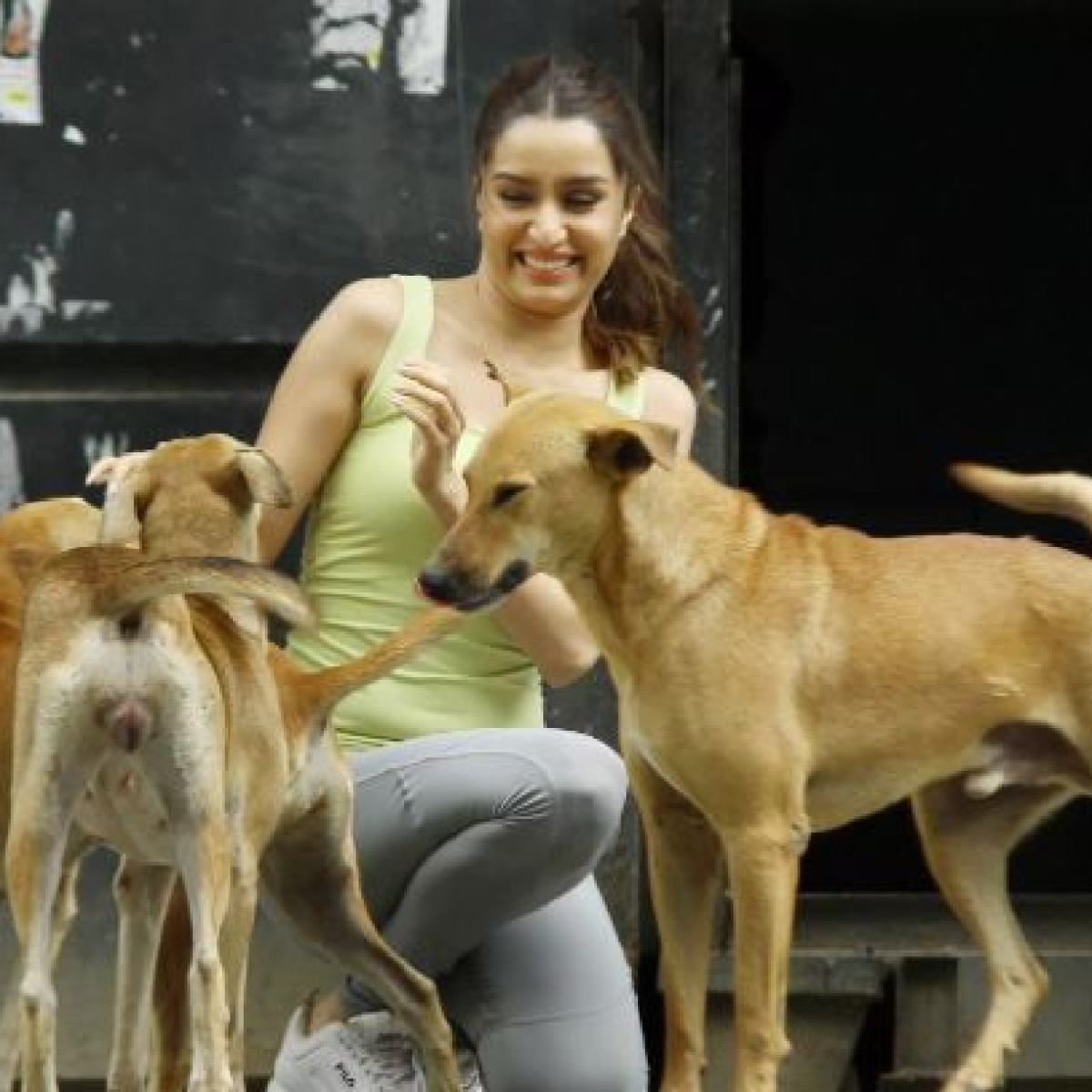 Shraddha Kapoor contributes to help feed stray animals during coronavirus lockdown