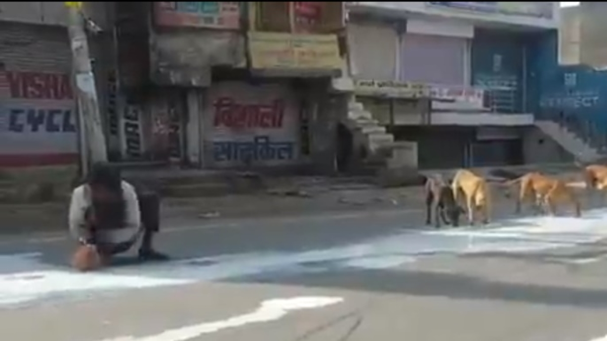 Coronavirus lockdown: Video of man, dogs sharing milk spilt on road in Agra goes viral