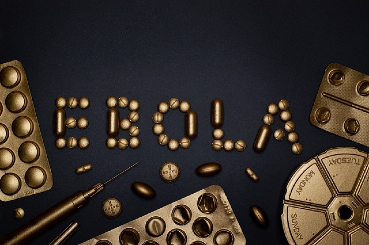 WHO emergency committee to discuss on Ebola outbreak after new DRC case