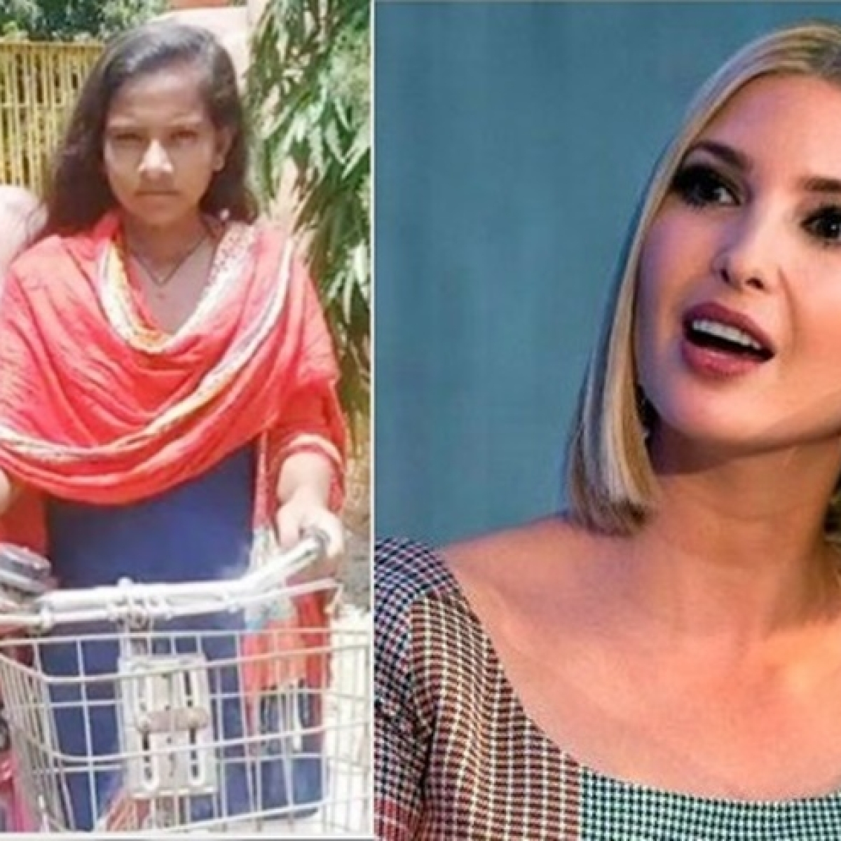 Beautiful feat of endurance and love: Ivanka Trump praises Bihar girl cycling over 1,200 km home with injured father