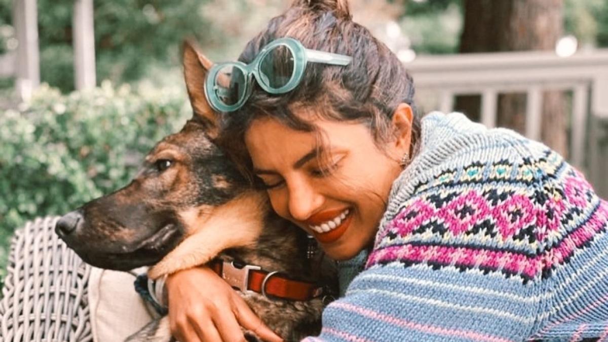 Priyanka Chopra's cuddles with her pet dog Gino in latest Instagram post