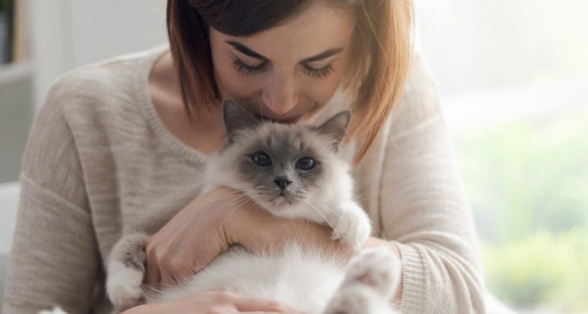 Why cuddling and kissing your cat could be a risky affair in times of pandemic