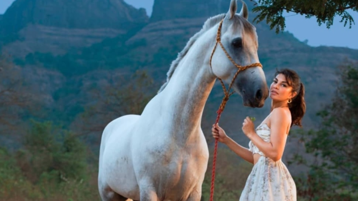 Jacqueline Fernandez poses with Salman Khan's horse for her latest magazine cover; see pics