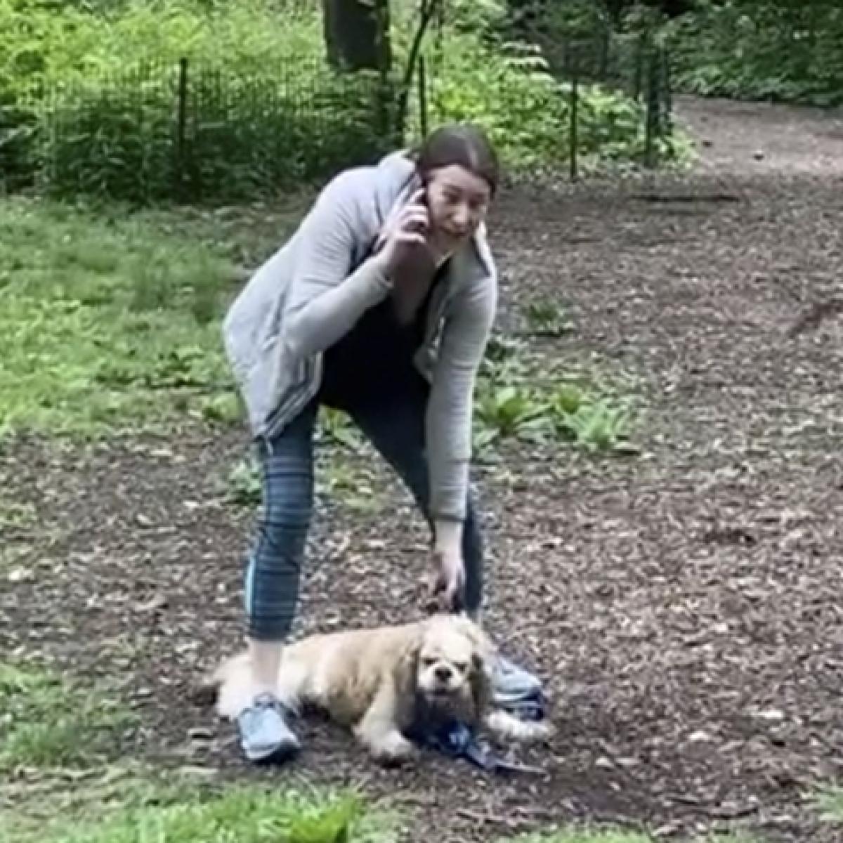 Central Park dog lady Amy 'Karen' Cooper fired from Franklin Templeton for calling cops on black man