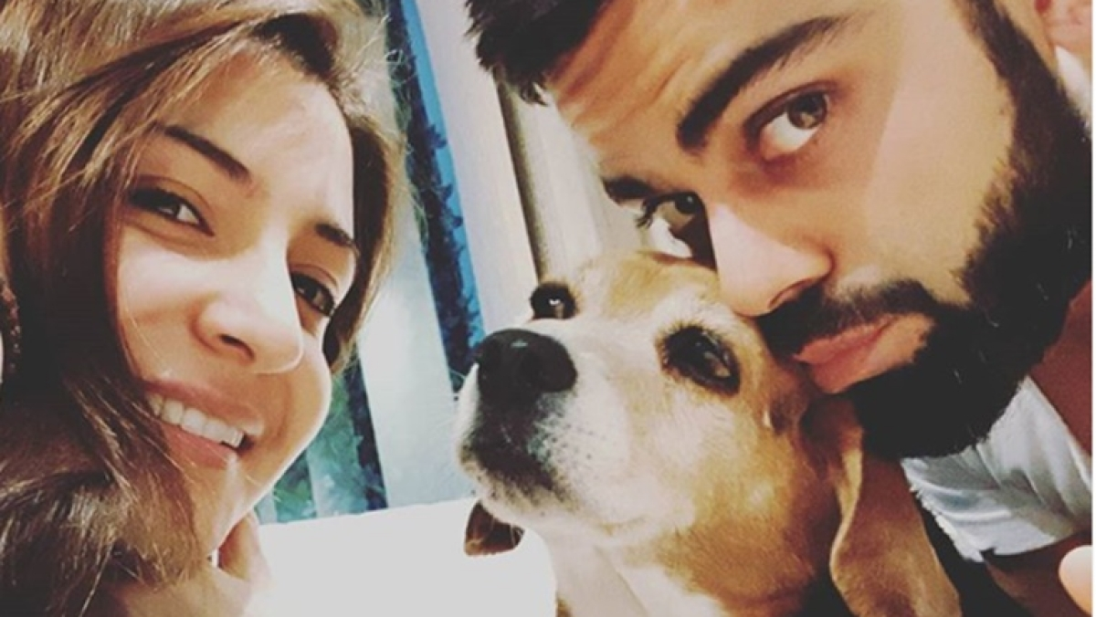 RIP Bruno: Virat Kohli, Anushka Sharma mourn death of their pet
