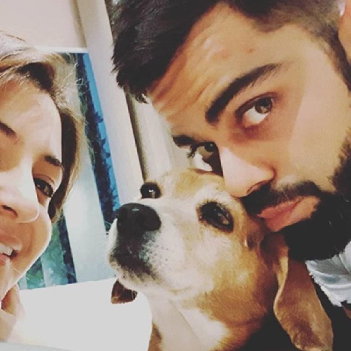 RIP Bruno: Virat Kohli, Anushka Sharma mourn death of their pet