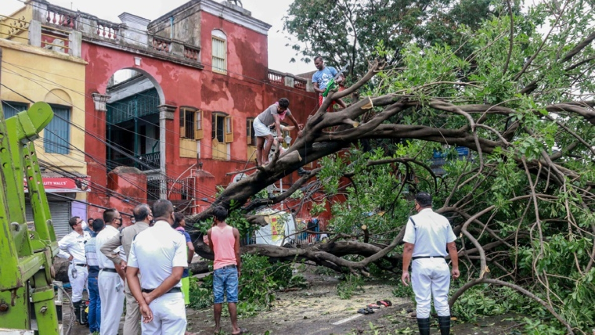 Cyclone Amphan: Fiercest cyclone in 100 years overwhelms West Bengal; 76 killed