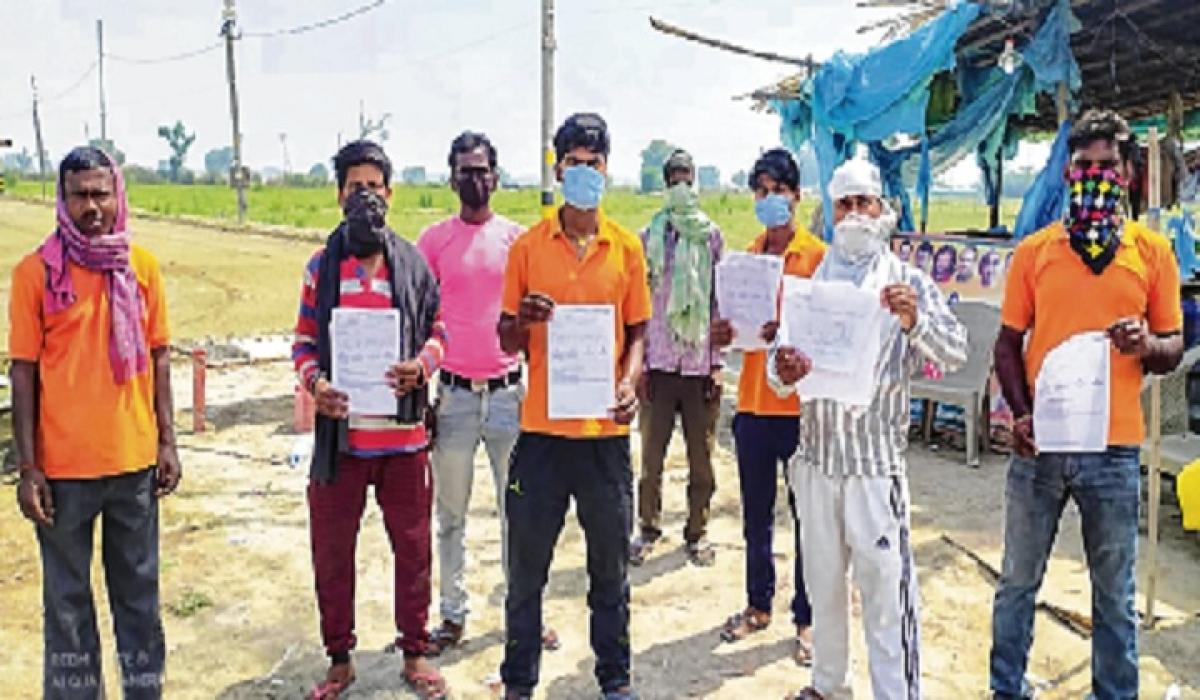 Delhi farmer sends 10 workers to Bihar by air