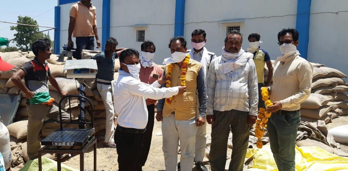 Madhya Pradesh: Mandsaur farmers produce record 2.85 lakh metric tonne of wheat