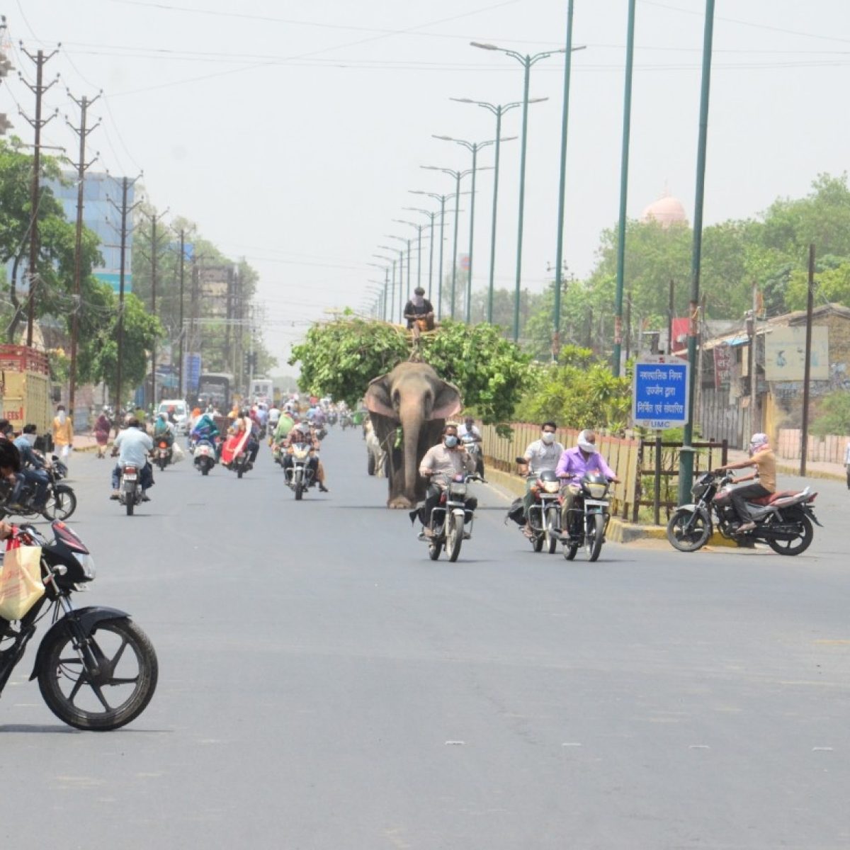 Ujjain: Tally breaches 350 mark with 21 new cases