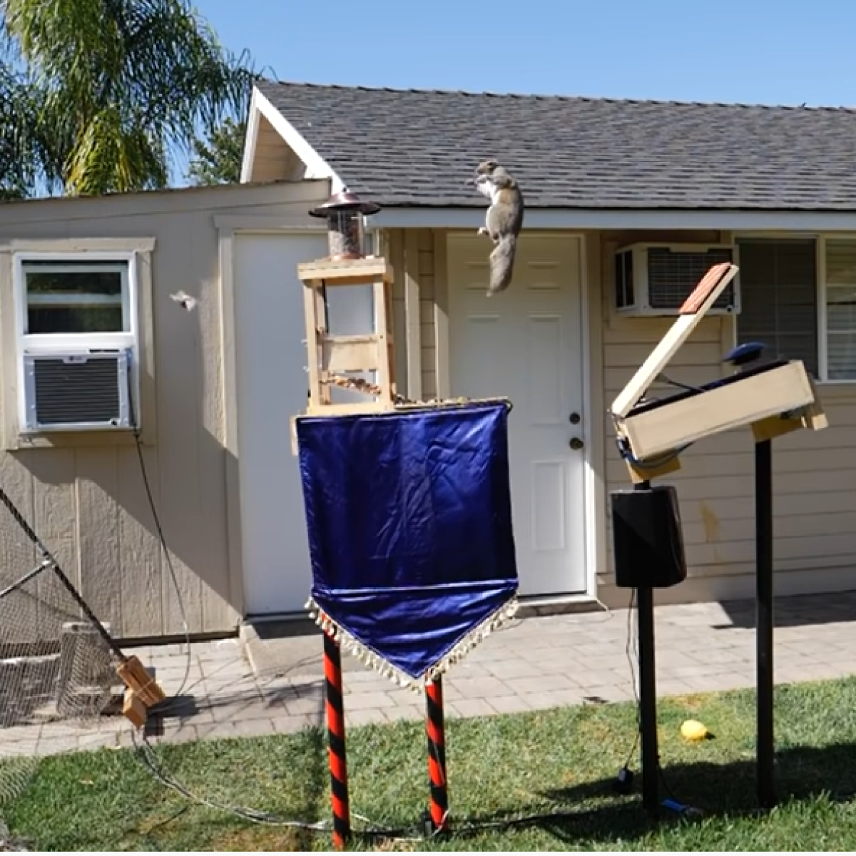 Watch: Former NASA engineer builds the perfect squirrel proof bird feeder