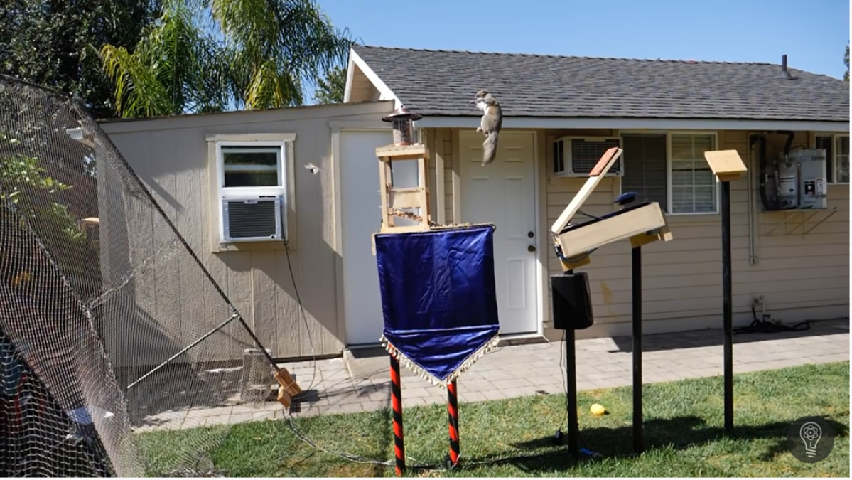 Watch: Former NASA engineer builds the perfect squirrel proof bird feeder with ninja obstacle course