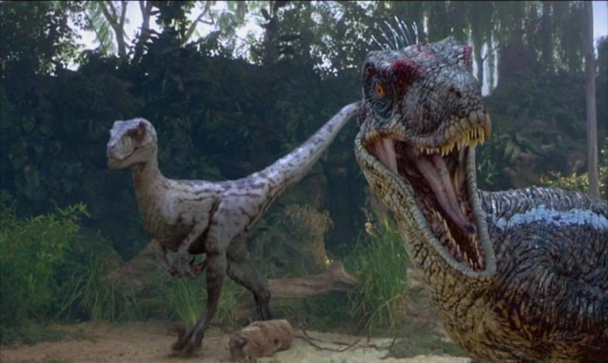 Unlike 'Jurassic Park' movie, real Velociraptors did not ...