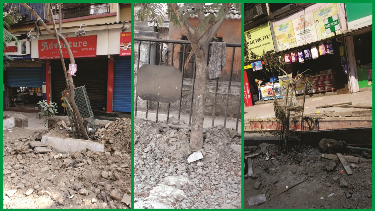 In Mira Road, MBMC-appointed contractors spare no trees while concretising roads in the city