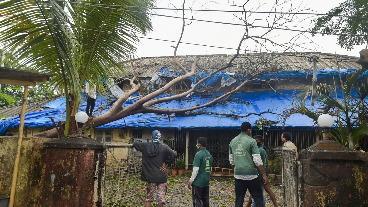 Workers prepare to chop an uprooted tree to clear the premises of a government building in the aftermath of Cyclone Nisarga, during the ongoing COVID-19 nationwide lockdown, at Panvel in Raigad district.