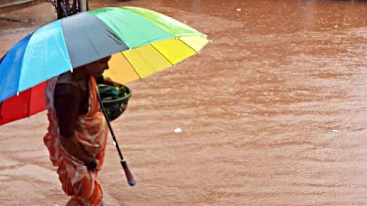 Monsoon covers entire country way ahead of the scheduled date: IMD
