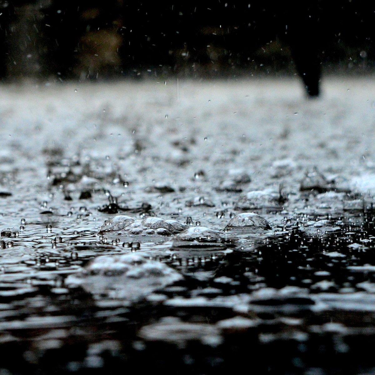 Indore: Monsoon officially in, moderate to heavyrains likely for couple of days