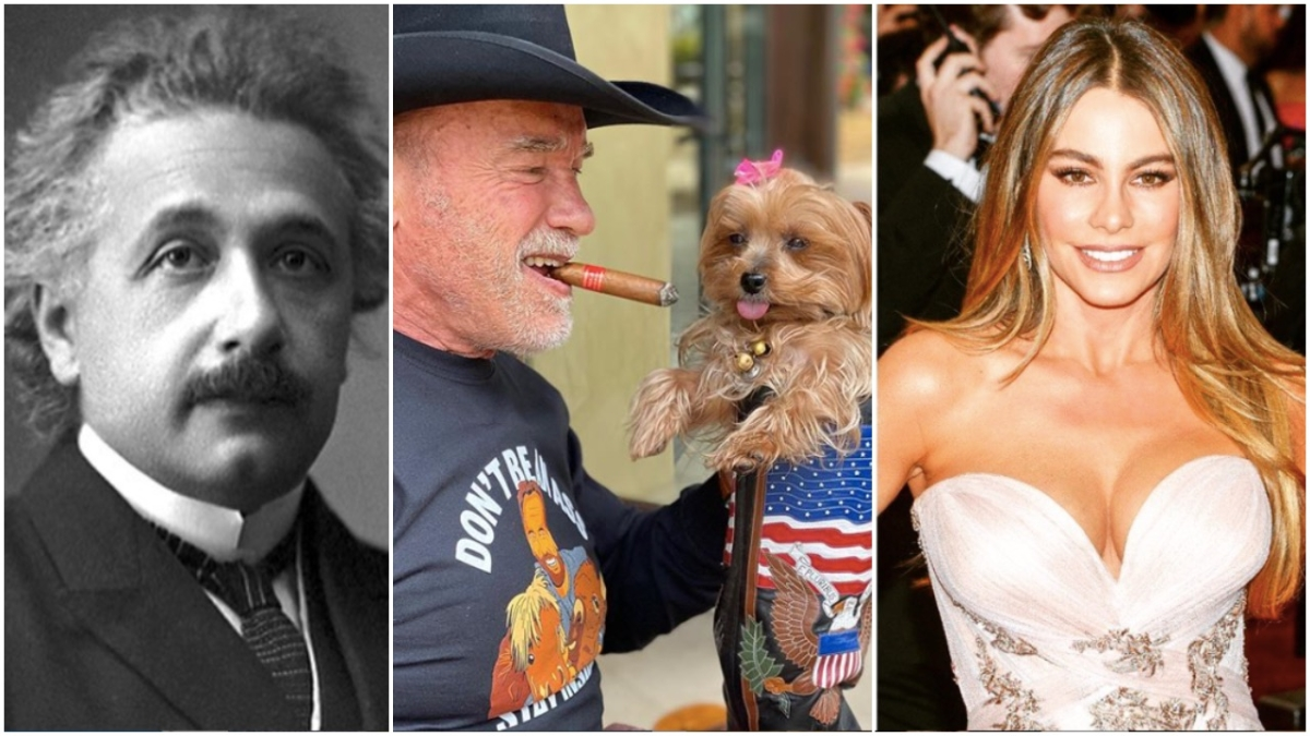 FPJ Fast Facts: From Albert Einstein to Sofia Vergara, here are 9 immigrants who helped Make America Great Again