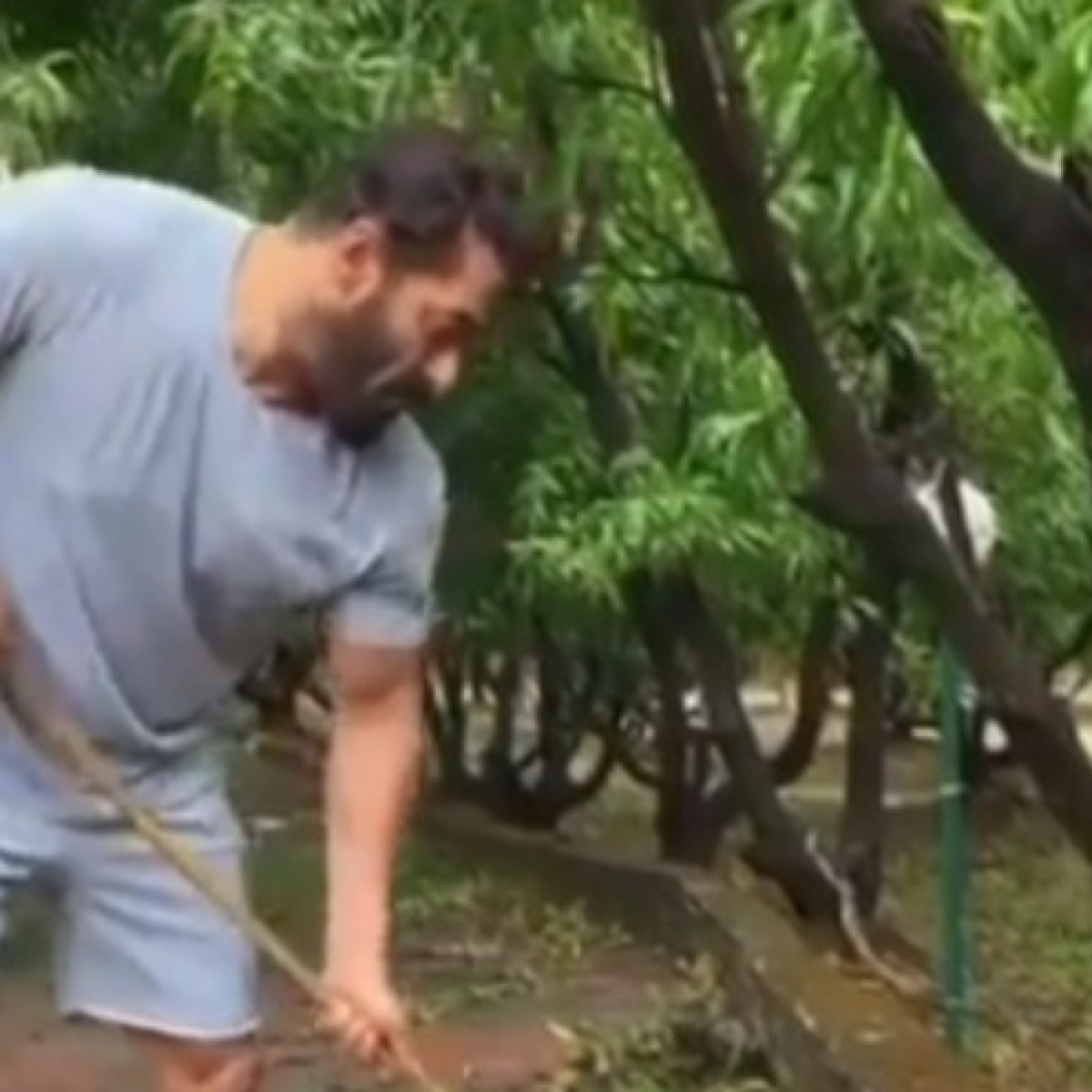 Salman Khan cleans up his Panvel farmhouse to mark World Environment Day 2020; watch video
