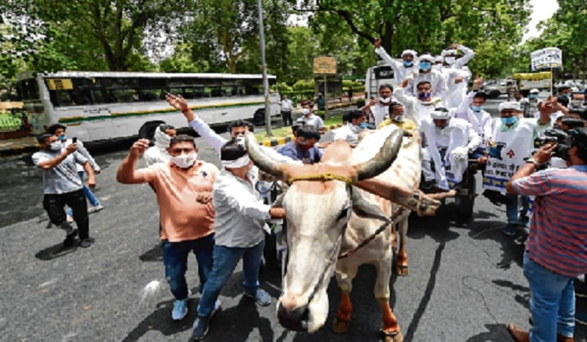 Extortion through petrol, diesel price hike: Congress