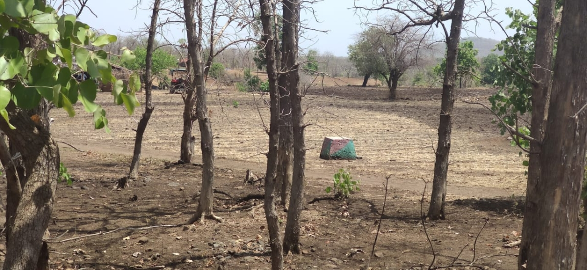 FPJ Impact in Indore: Ranger suspended for allowing farmers to encroach forest land amid lockdown