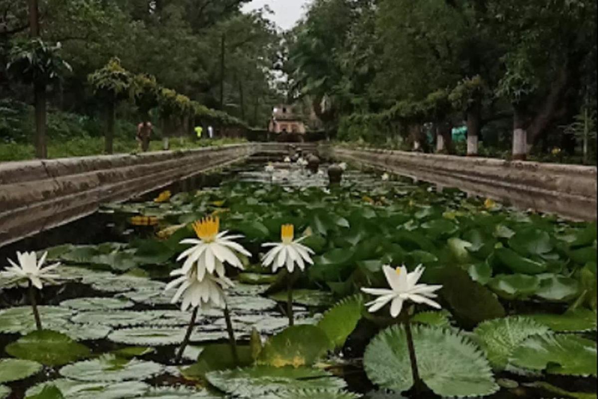 Aurangabad citizens seek biodiversity zone tag for 17th century garden