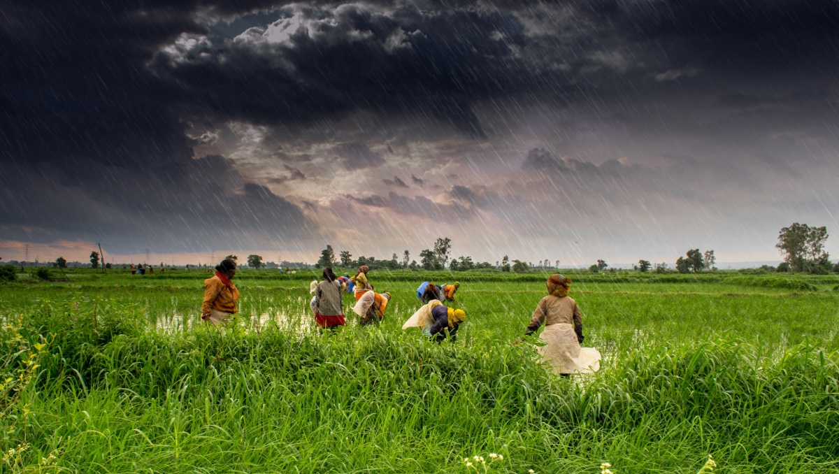 Here's why this is the right time to support agriculture