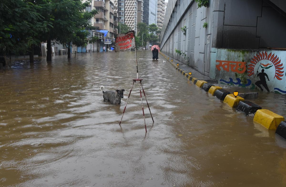 Hindmata area water logged due to heavy rain.