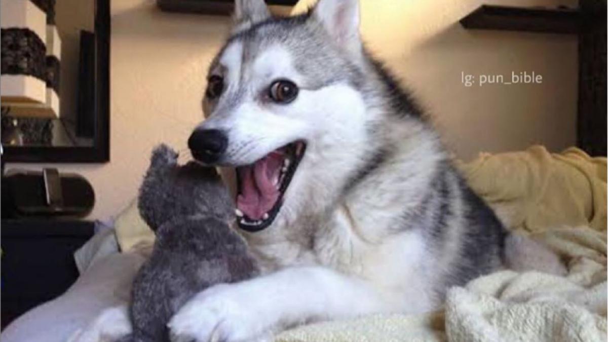 FPJ Fun Corner: Best WhatsApp memes and jokes to lighten your mood amid COVID-19 on July 5, 2020