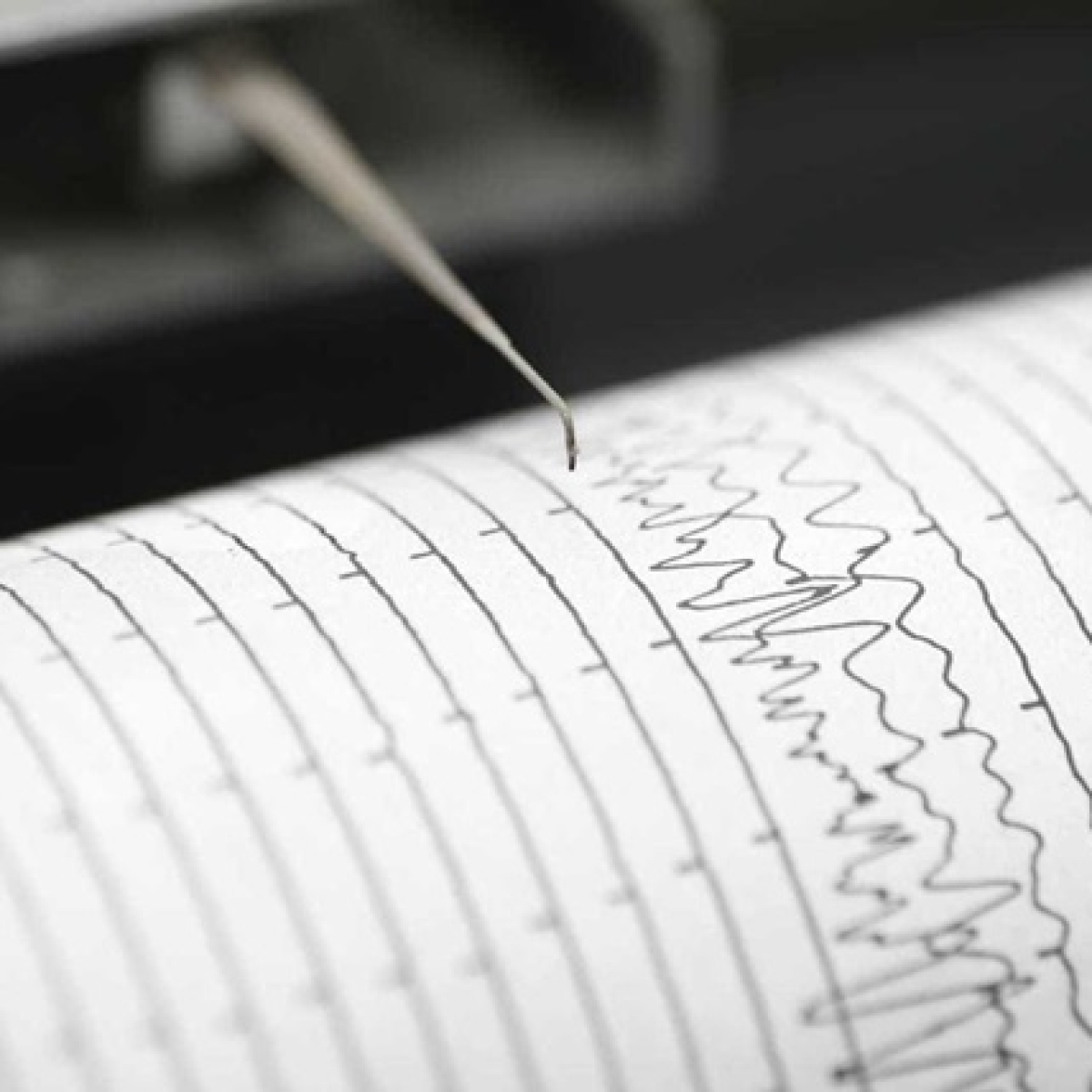 Earthquake of 4.7 magnitude hits Ladakh's Kargil