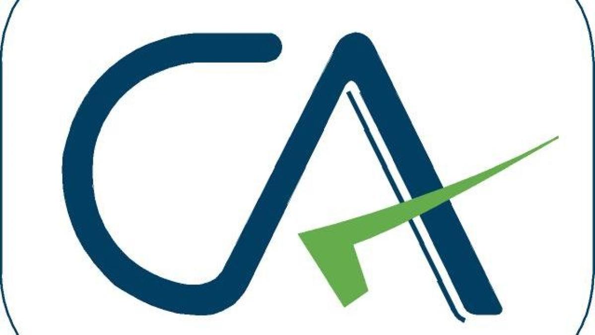 CA exams postponed to November 2020: ICAI tells Supreme Court